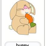bunny flashcard