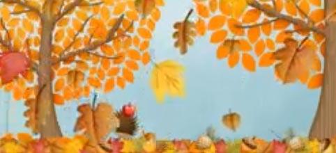 autumn-video2