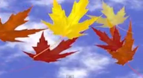 autumn-video3
