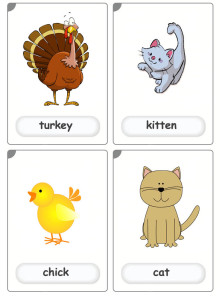 farm-animals4 flashcards