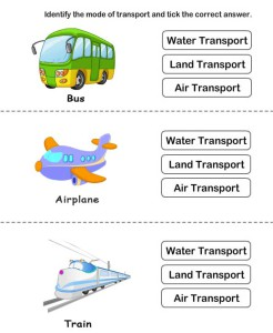 Identify type of transport card 2