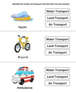 Identify type of transport card 3