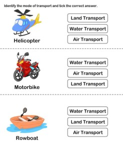 Identify type of transport card 5