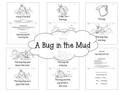 a_bug_in_the_mud
