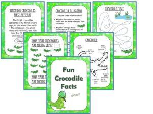 Crocodiles Fun Facts